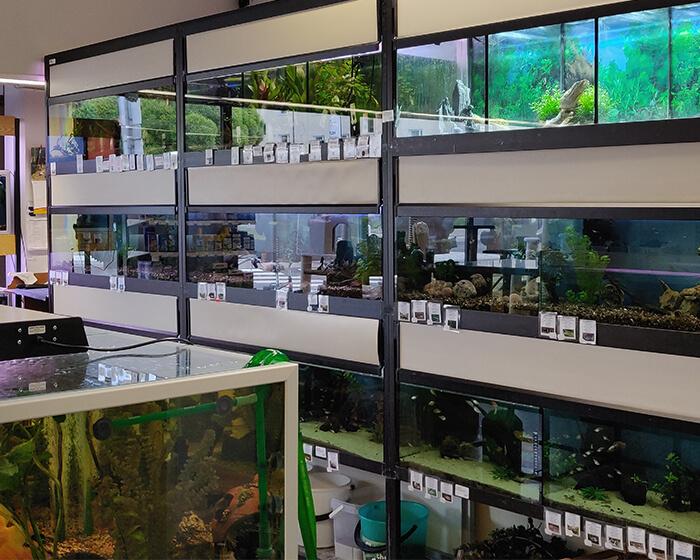 Isot ja pienet akvaariot